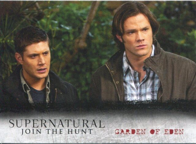 Supernatural Seasons 4-6 Locations Chase Card L15 Garden of Eden