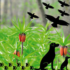 Dogs Bird Paws Window Glass Protection Decor Film Tattoo Sticker - Window decals for bird protection