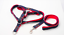 Harness-Leash-Collar-Jean-Style-Comfy-Dog-Pet-Puppy-Lead-Control-Heavy-Duty thumbnail 24