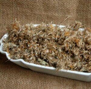 Krauterino 24-Arnica fiori cibo messicano tutto 100g