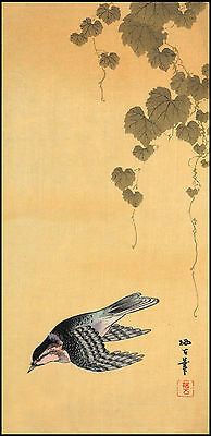 Japanese Print Reproductions: Small Bird and Grapes - Fine Art Print