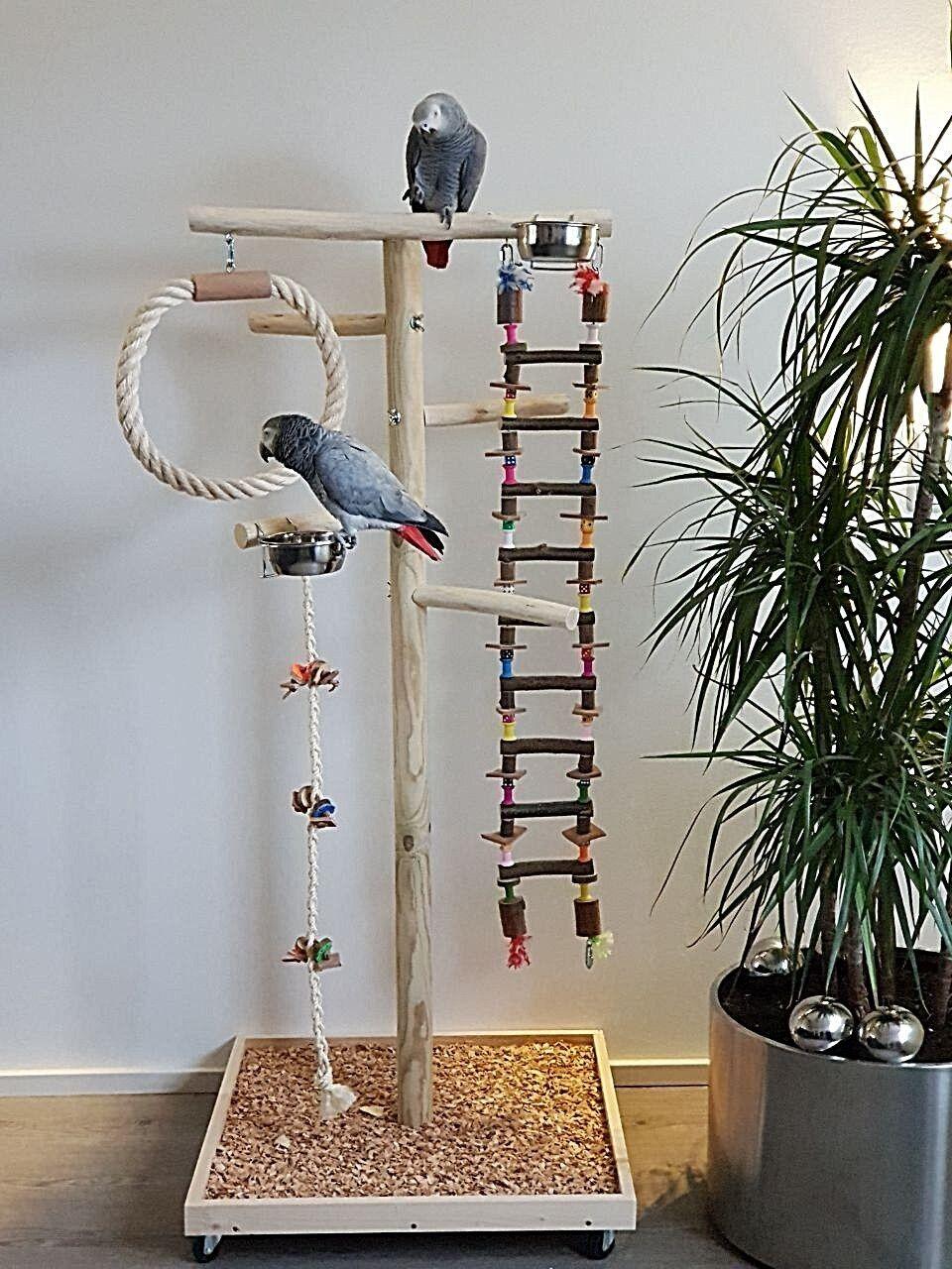 SEDILE liberamente in legno pappagalli liberamente sede ponte sospeso arrampicata PAPPAGALLI giocattoli