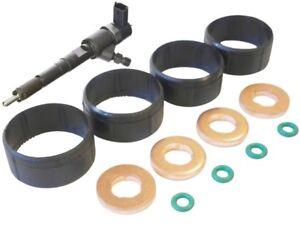 o-ring CITROEN C1 C2 C3 XSARA 1.4 HDI Set di O.E FUEL Injector Guarnizione RONDELLA
