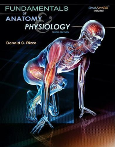 Fundamentals Of Anatomy And Physiology by Donald C Rizzo ...