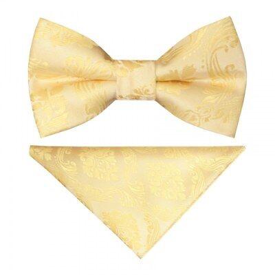 Pre Legato Oro Paisley Ragazzi Cravatta A Farfalla Fazzoletto Da Taschino Set Bambini Dickie Bow Per Bambini-