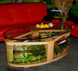 Image Is Loading Oval Shape Coffee Table Aquarium With Everything Needed