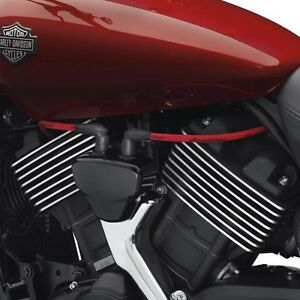 Details about Harley XG STREET 15 and + Red screamin eagle 10mm spark on