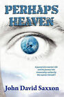 Perhaps Heaven: The Story of a Warrior's Life and His Journey to Immortality, Book I by John David Saxxon (Paperback / softback, 2008)
