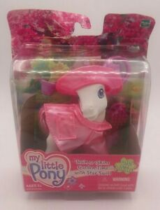 MLP-My-Little-Pony-G3-Rain-or-Shine-Garden-Time-Star-Swirl-with-Brush-Coat-Hat