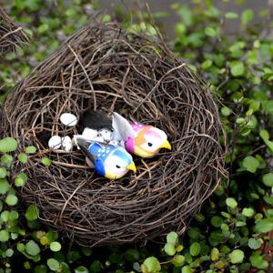 1x-Cute-Micro-Landscape-Garden-Decor-Miniature-Fairy-Garden-Little-Bird-Egg-Nest