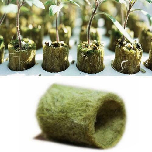Rockwool Cube Hydroponic Grow Media Bodenloser Anbau Pflanzen NEU Base Comp N1M4