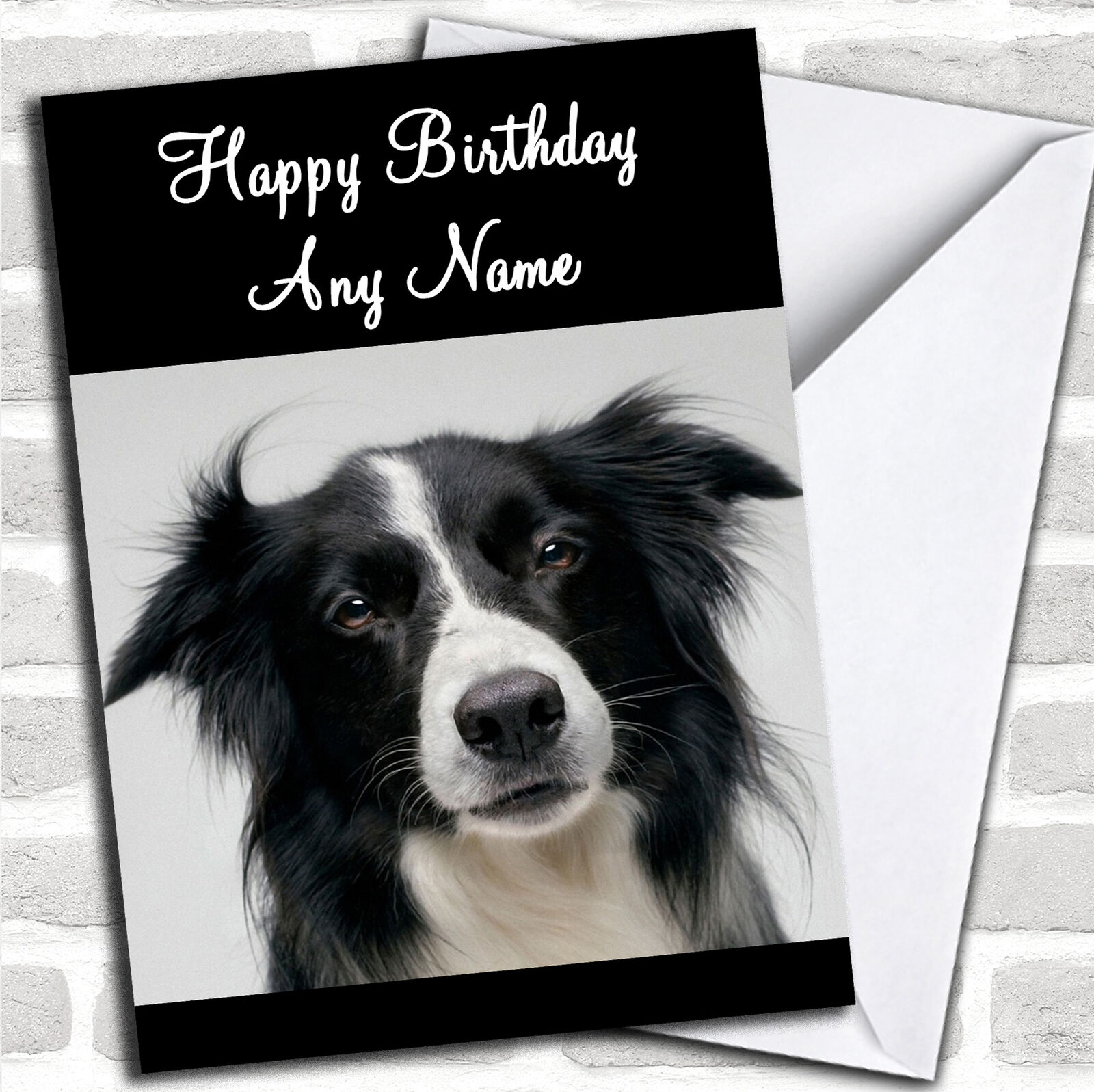 Box of 16 Cards /& 16 Envelopes Border Collie Dogs Christmas Cards