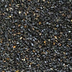 BULK-5-KG-Sesame-Seeds-Black-Premium-Quality-Vacuum-Packed-Free-postage