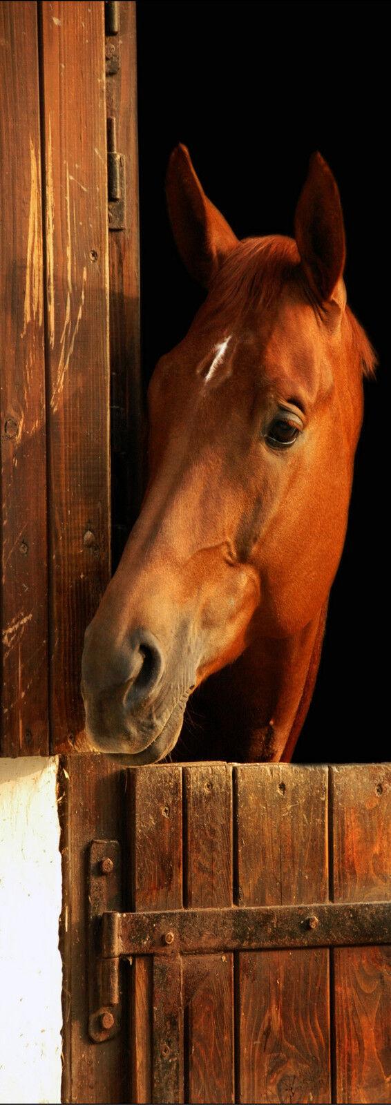 Plakat Plakat Tür Deko Schein Auge Pferd Ref 519 - 4 Größe