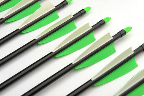6PCS 30/'/' Fiberglass Arrow Spine 400 w// Green/&White Feather for Archery Hunting