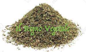 Santoreggia pianta aromatica pura taglio tisana g spezia