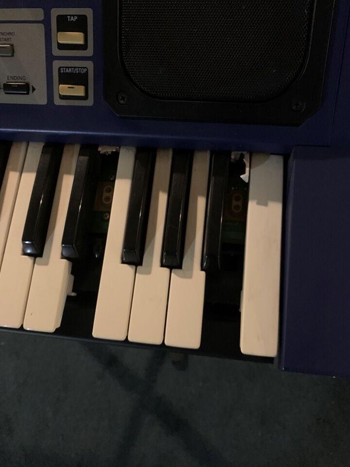 Synthesizer, Roland EG-101 Groovebox