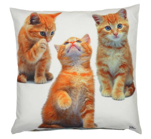 lustiges Katzen Motiv Kissen Katzen Kuschelkissen Deko Katze Katzen Kissen