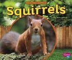 Squirrels by Mari Schuh (Hardback, 2015)