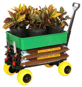 Details About Garden Gardening Cart Wagon Yard Lawn Trolley Dump Carts  Beach Kart Fishing DIY