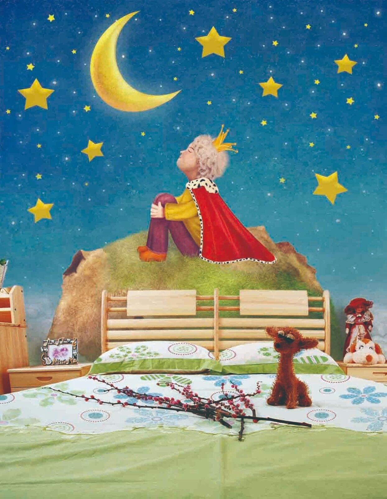3D Prinz Mond Sterne 9083 Tapete Wandgemälde Tapeten Bild Familie DE Lemon | Deutschland Store  | Neu  | Großhandel