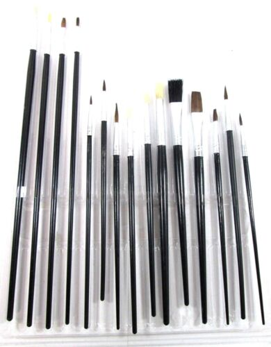 BR015 15 pc Artist Brush Set Flat Pointed and Round Tipped Brushes