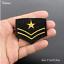 Patch-Toppa-Esercito-Militare-Military-AirBorne-AirForce-Ricamata-Termoadesiva Indexbild 20