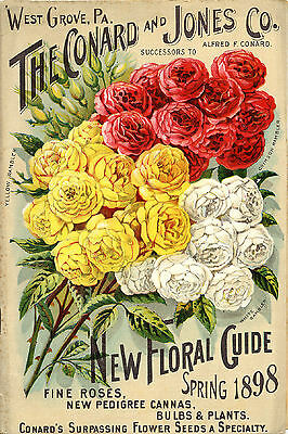 Vintage Shabby Chic Victorian 1898 Floral Garden  Prints A3 or A4 Sizes