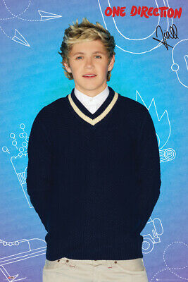 Maxi Poster 61cm x 91.5cm Niall One Direction new /& sealed