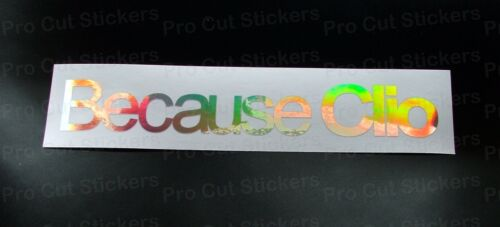 Because Clio Renault Silver Hologram Neo Mirror Chrome Vinyl Car Stickers Decals