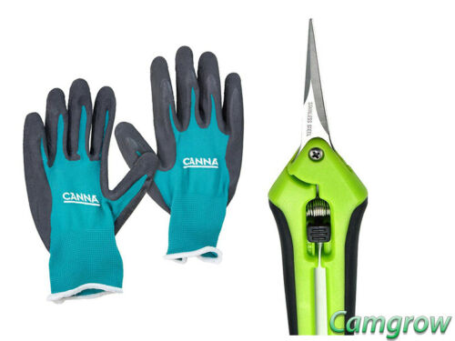 CANNA Gloves /& Fast Green Hand Clean /& Straight /& Curved Green Trimming Scissors