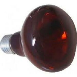 LAMPADA-INFRAROSSI-150-WATT-PER-RETTILI-TARTARUGHE