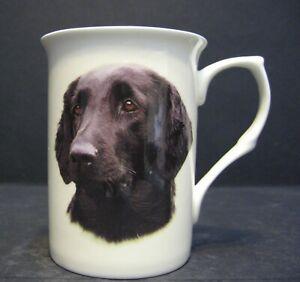 Flat-Coat-Retriever-Dog-Head-B-F-Fine-Bone-China-Mug-Cup-Beaker