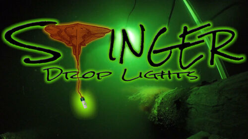 50w 5,000 LUMEN !! Portable 12v High Output Green LED Fishing Light