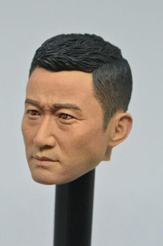 1//6 Jason Wu Head Sculpt Wu Jing Heads Model F 12/'/' Male Figure B