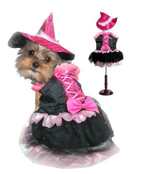 Alta Calidad Perro Disfraz - Lazo pink Bruja Led Disfraces Luz Brillante Brujas