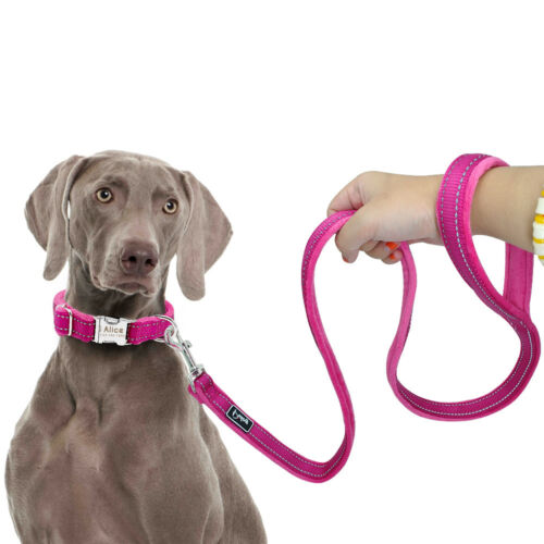 Plush Padded Small Large Dog Walking Leash No Tangle Snap Clip for Dogs Breeds