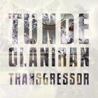 Transgressor von Tunde Olaniran (2015)