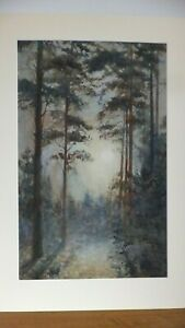 Original-Old-Watercolour-Painting-Landscape-Forest-Trees-by-Lucy-Gee-signed