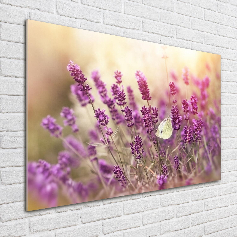 Glas-Bild Wandbilder Druck auf Glas 100x70 Deko Blaumen & Pflanzen Lavendel