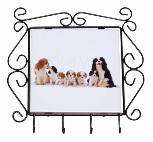 AD-SKC11KH King Charles Spaniel Dogs Wrought Iron Key Holder Hooks Christmas Gi