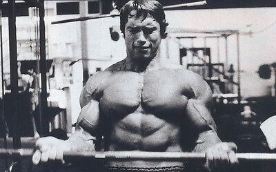 "11 Arnold Schwarzenegger - Bodybuilder Mr Olympia Universe 38""x24"" Poster"