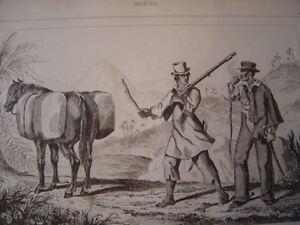 Brasil-Brazil-Woodland-Valet-of-Cotton-and-Sertanejo-Engraving-on-Steel-of-1838