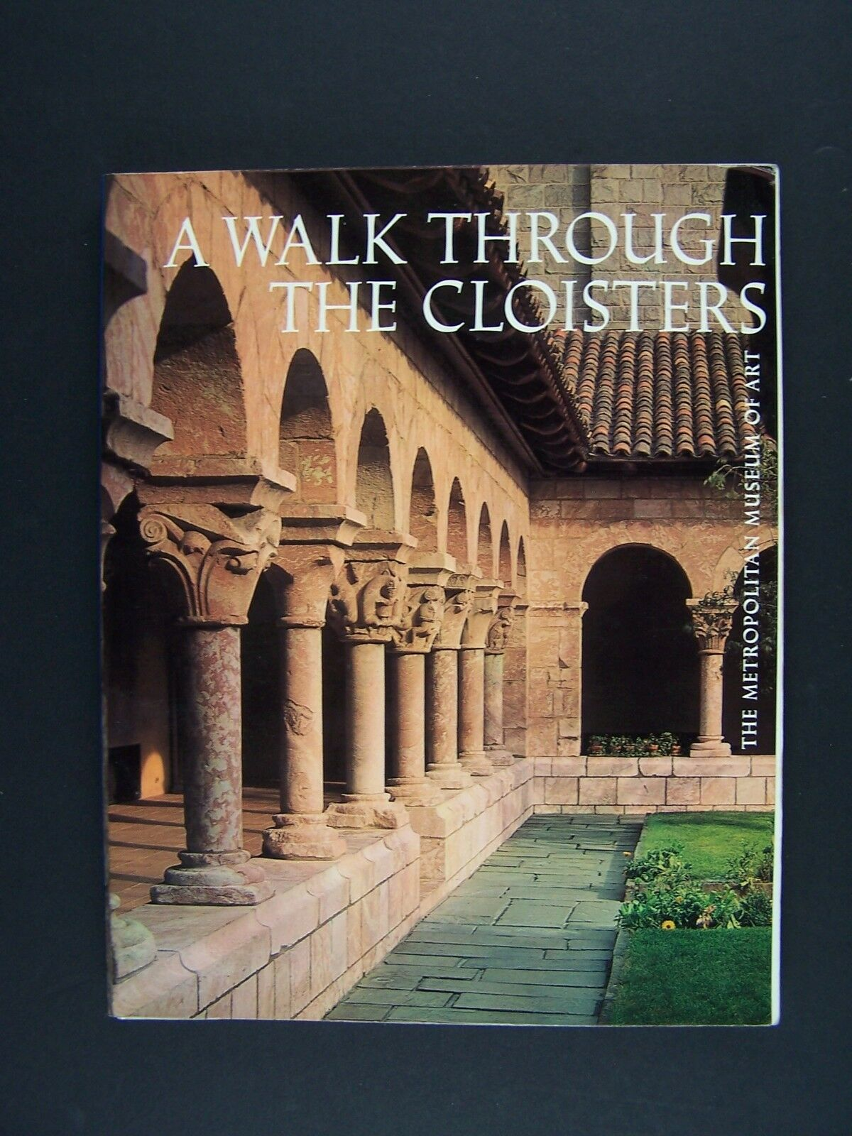 A Walk Through the Cloisters by Bonnie Young, Metropoli
