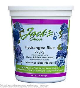 Image Is Loading Jack 039 S 7 3 3 Hydrangea Blue