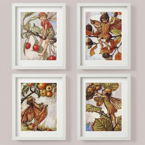 FLOWER FAIRIES SET 4 Picture Print CRAB APPLE Tree CHERRY Hazelnut BEECHNUT Nuts