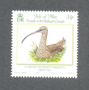 Isle Of Man-oiseaux-courlis Neuf Sans Charnière-afficher Le Titre D'origine