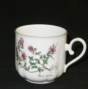 seltmann weiden bavaria gloria flora kr uter thymus blumen kaffeetasse 0 2 ltr. Black Bedroom Furniture Sets. Home Design Ideas