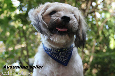 Leather Bandana Collars for dogs,cats,pets