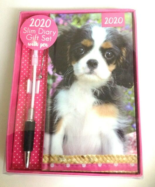 2017 SLIMLINE POCKET DIARY WITH PEN IN GIFT SET PUPPY OR KITTEN PICTURE